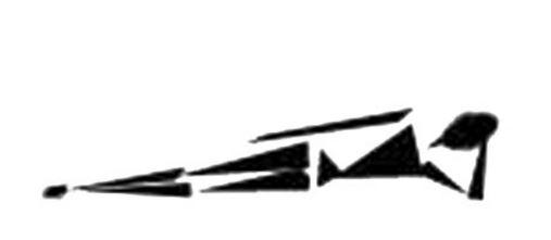 bacino-5