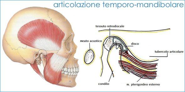 Rilassare i muscoli della mandibola