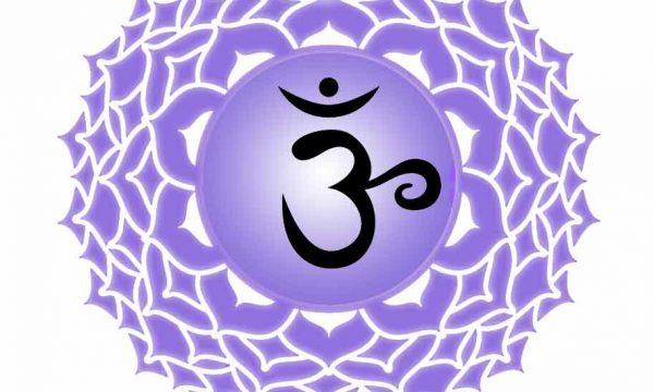 Il settimo chakra – Sahasrara